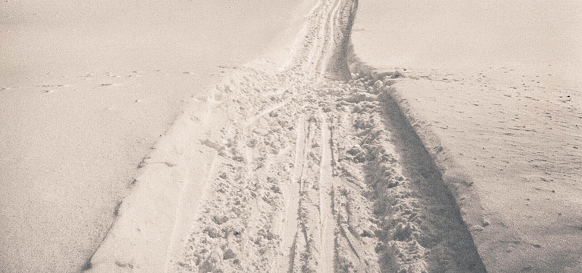 Le ski de fond